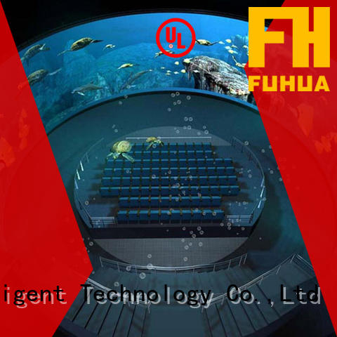 Fuhua system dome projection Realistic Effect for commercial amusement