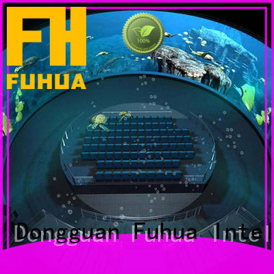 photographic dome projection fuhua wholesale
