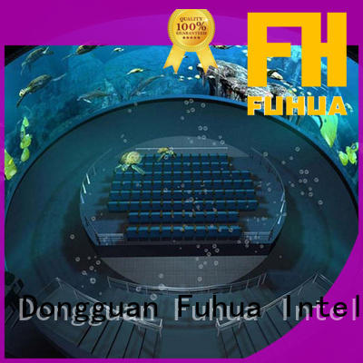 Fuhua High-tech projection dome wholesale for education